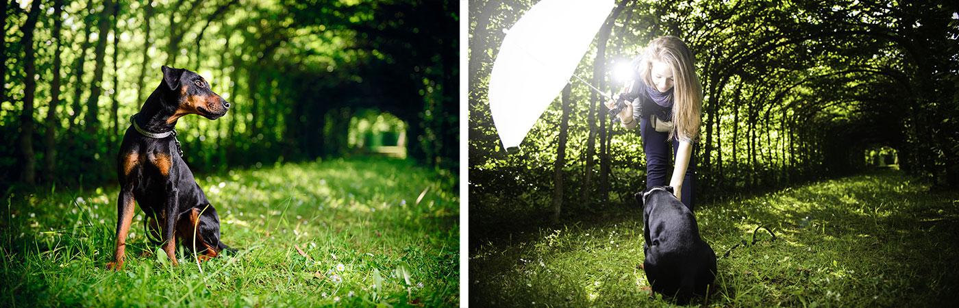 Hundefotografie im Weißhauswald Trier - Making Of! (Julia mit Blitzlicht)
