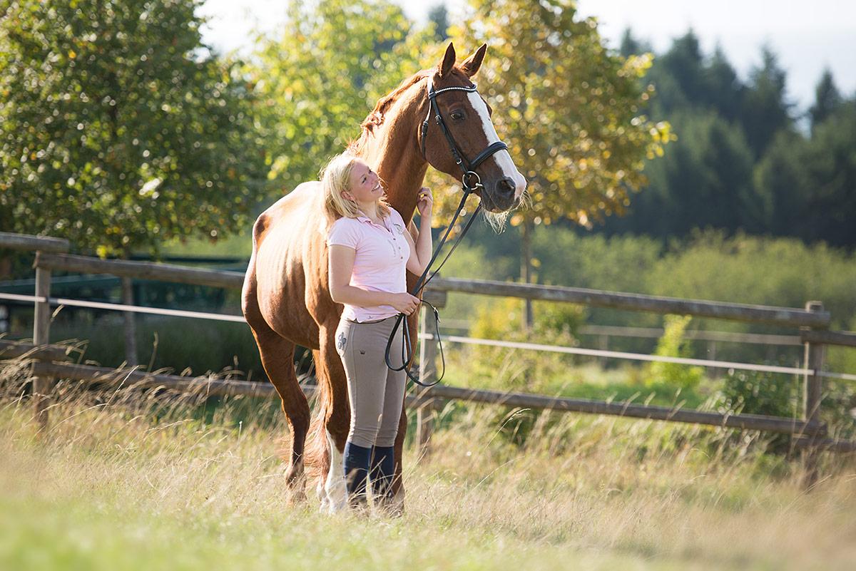 Pferde-Fotograf