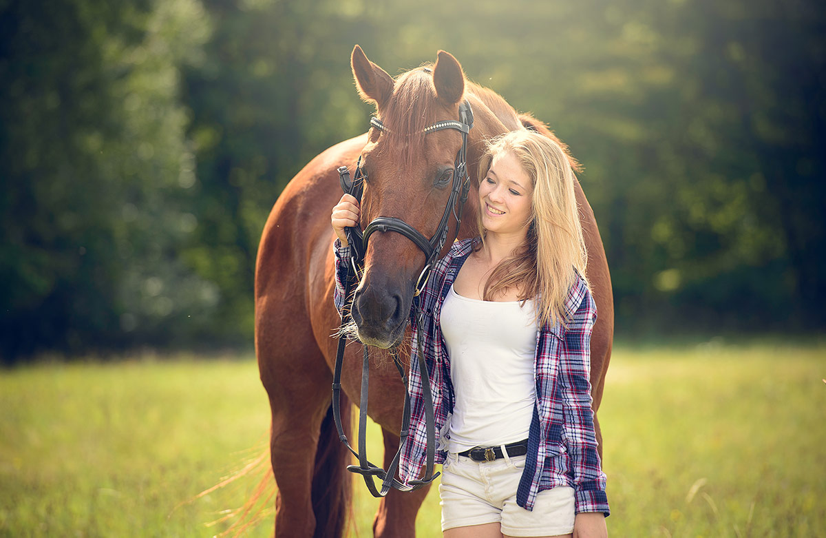 Pferde Fotos Trier