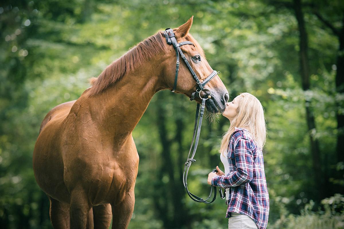Pferdefotograf Trier: Pferdefotos im Gelände