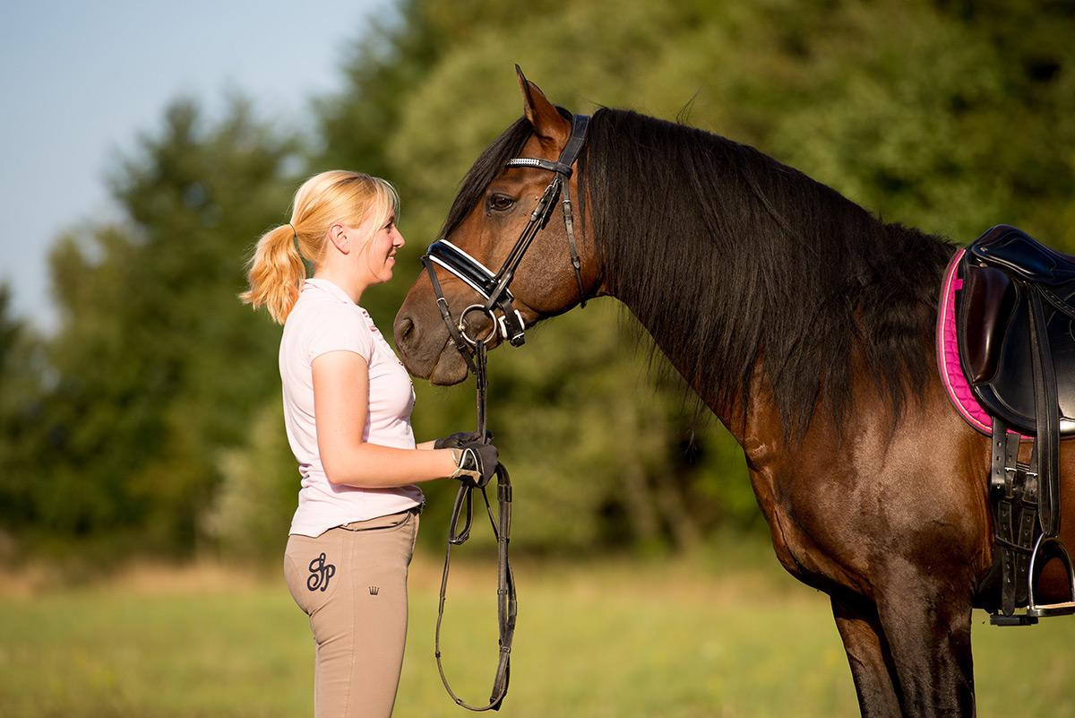 Foto mit Reiter und Pferd